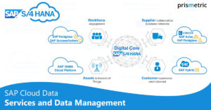 SAP enters with cloud data service with data management with HANA