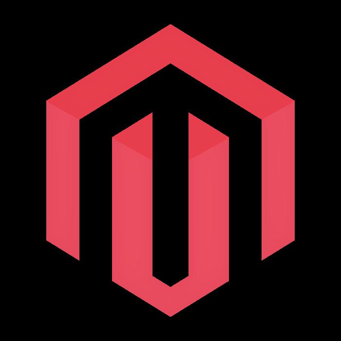 Top Magento Development Company